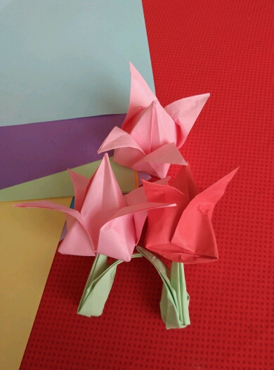 1楼 主题:郁金香美丽的郁金香折法(附步骤)【申精】