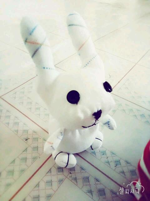 1楼 主题:手工制作,小兔子,像吗?