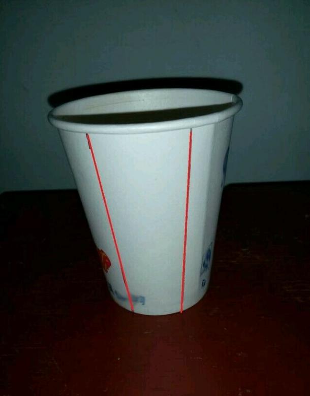 巧妙利用废旧纸杯简单手工制作形象可爱天鹅