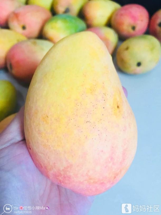 太阳爷爷寄来的芒果~❤️